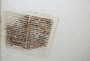 Filter Replacement Project | Air Duct Cleaning Richmond, TX